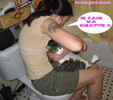 Jamison rase sa chatte