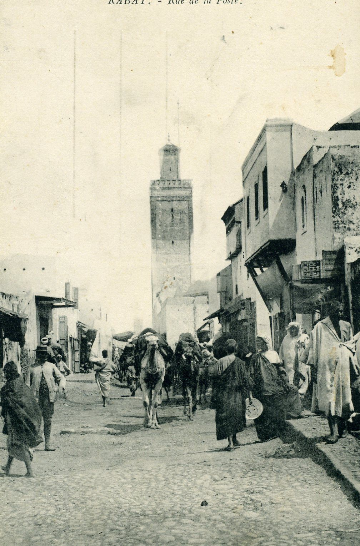 Chat maroc amazigh